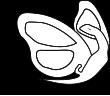 La mariposa y la iguana ediciones